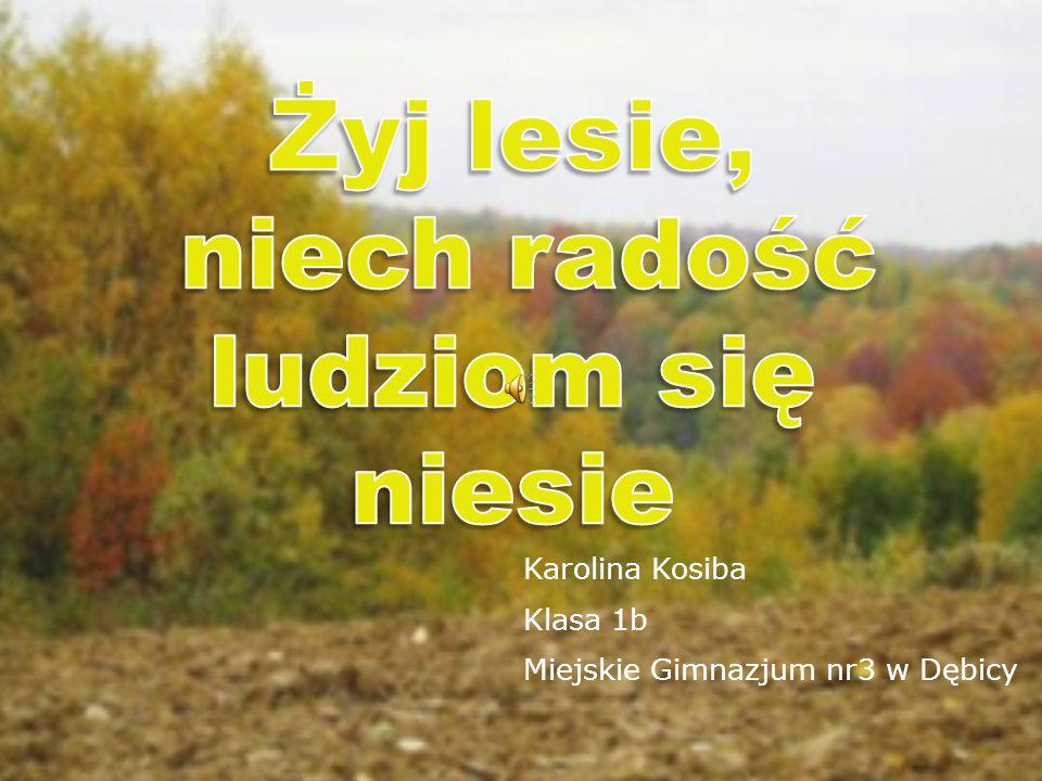 Karolina Kosiba Klasa 1b Miejskie Gimnazjum nr3 w Dębicy