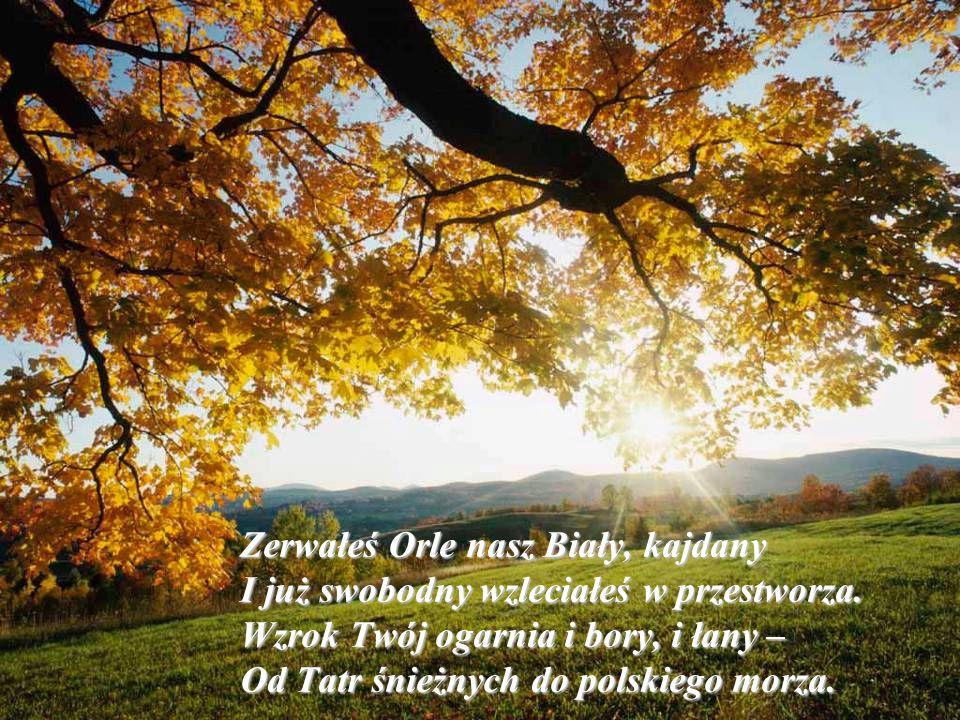 Zerwałeś Orle nasz Biały, kajdany I już swobodny wzleciałeś w przestworza. Wzrok Twój ogarnia i bory, i łany – Od Tatr śnieżnych do polskiego morza.