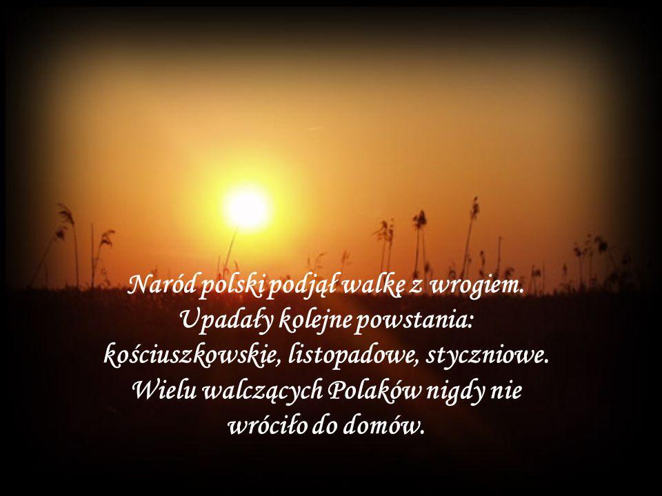 Naród polski podjął walkę z wrogiem. Upadały kolejne powstania: kościuszkowskie, listopadowe, styczniowe. Wielu walczących Polaków nigdy nie wróciło d