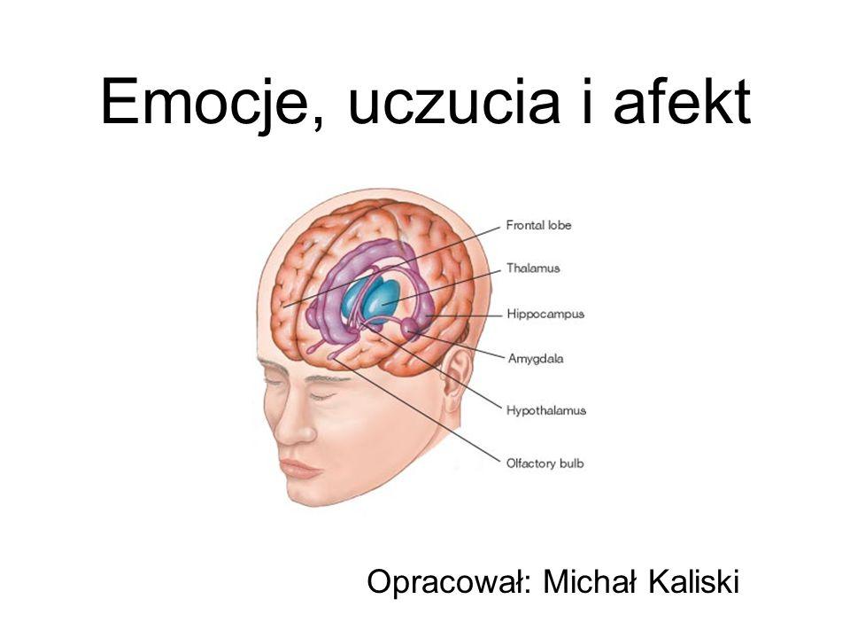 Emocje, uczucia i afekt Opracował: Michał Kaliski
