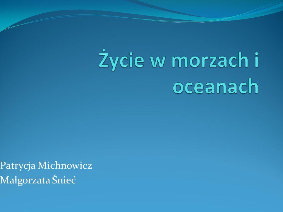 Patrycja Michnowicz Małgorzata Śnieć