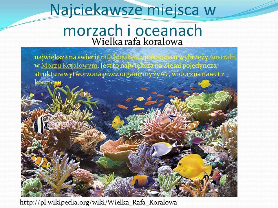 Wielka rafa koralowa Najciekawsze miejsca w morzach i oceanach http://pl.wikipedia.org/wiki/Wielka_Rafa_Koralowa największa na świecie rafa koralowa,