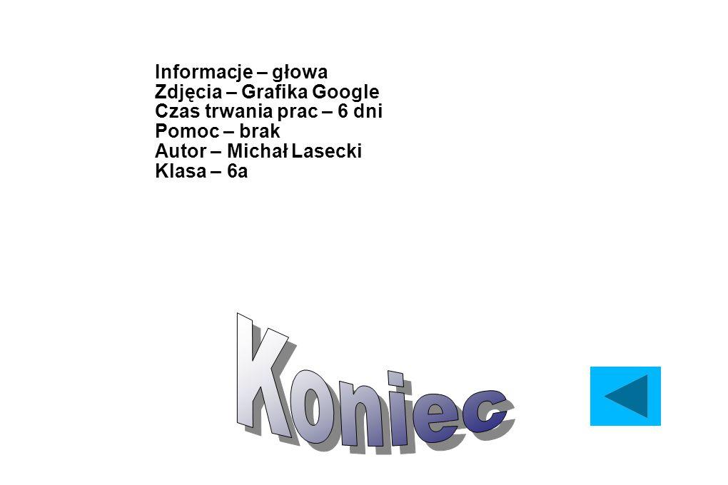 Informacje – głowa Zdjęcia – Grafika Google Czas trwania prac – 6 dni Pomoc – brak Autor – Michał Lasecki Klasa – 6a