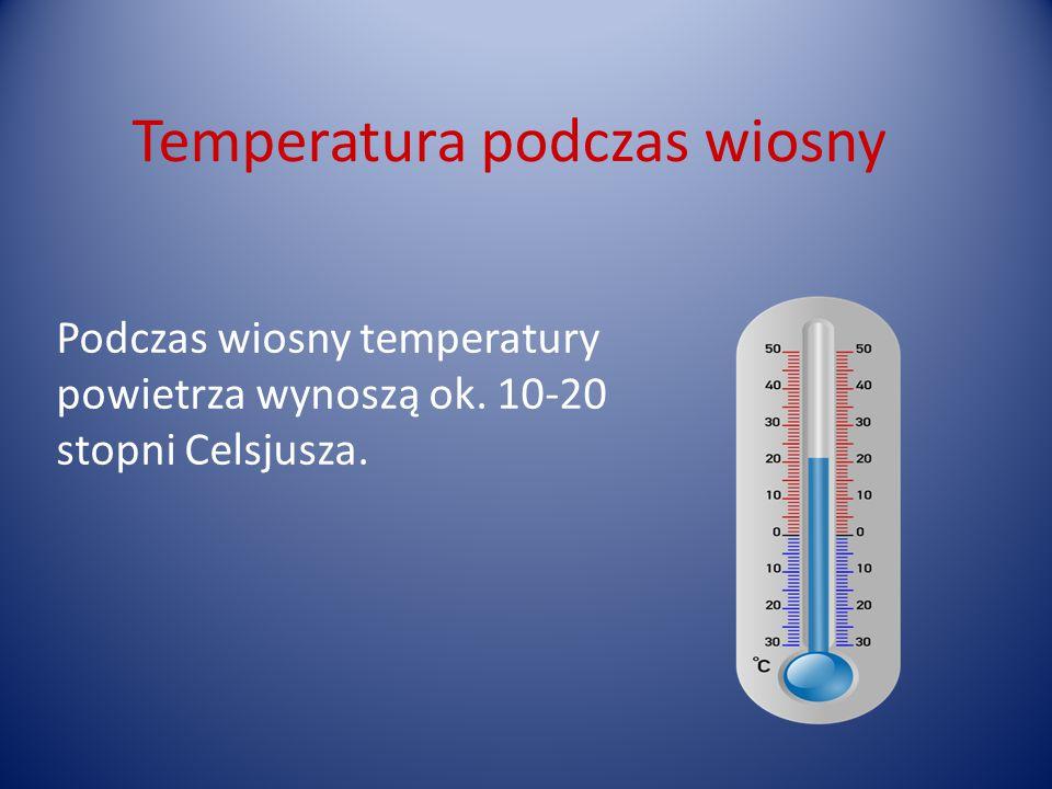 Temperatura podczas wiosny Podczas wiosny temperatury powietrza wynoszą ok. 10-20 stopni Celsjusza.