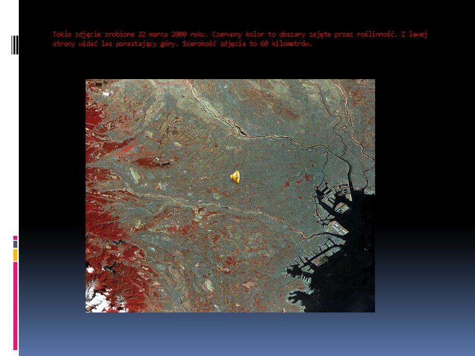 Tokio zdjęcie zrobione 22 marca 2000 roku. Czerwony kolor to obszary zajęte przez roślinność. Z lewej strony widać las porastający góry. Szerokość zdj
