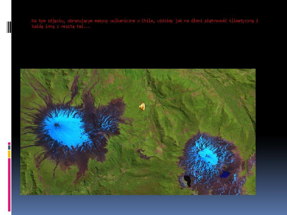 Na tym zdjęciu, obrazującym masywy wulkaniczne w Chile, widzimy jak na dłoni piętrowość klimatyczną i każdą inną z resztą też...