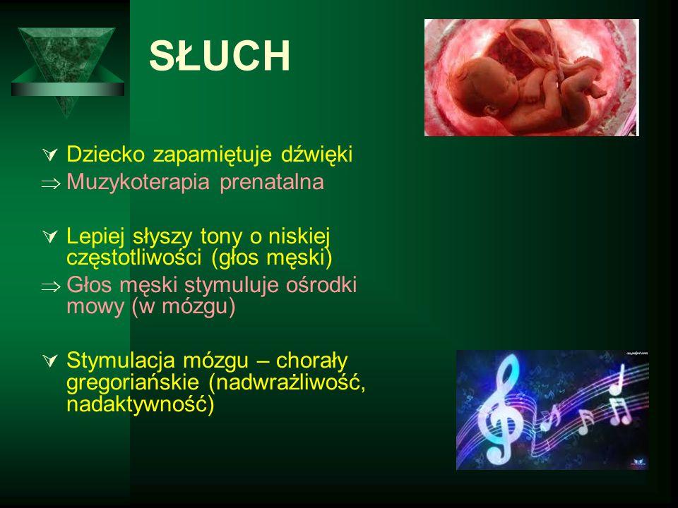 SŁUCH  Dziecko zapamiętuje dźwięki  Muzykoterapia prenatalna  Lepiej słyszy tony o niskiej częstotliwości (głos męski)  Głos męski stymuluje ośrod