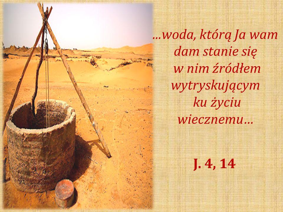 … Owocem Ducha Świętego jest: miłość, radość, pokój, cierpliwość, uprzejmość, dobroć, wierność, łagodność, opanowanie… Ga.