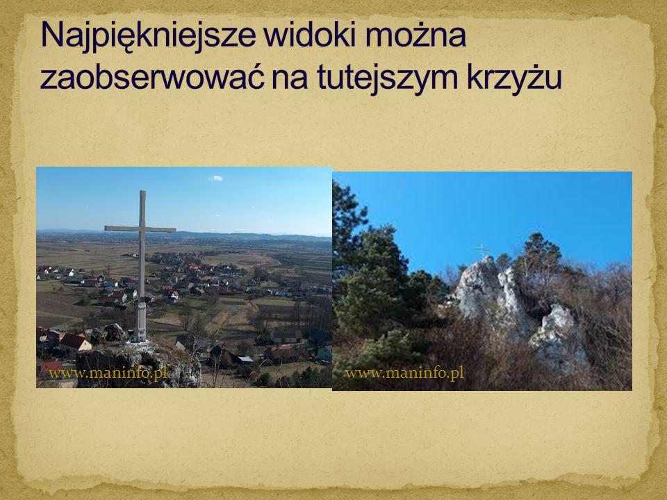 www.maninfo.pl