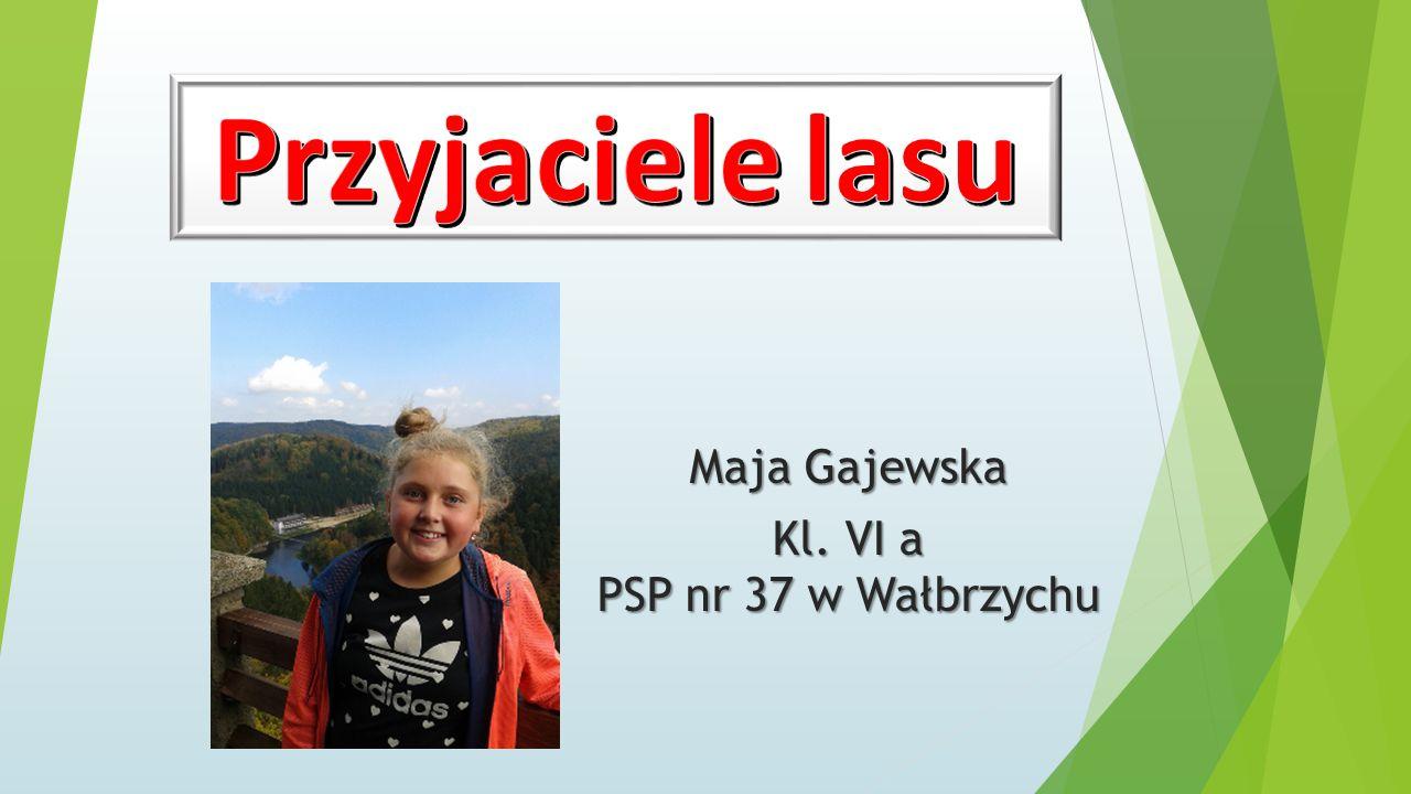 Maja Gajewska Kl. VI a PSP nr 37 w Wałbrzychu