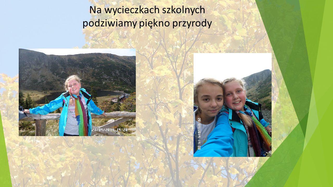 Na wycieczkach szkolnych podziwiamy piękno przyrody