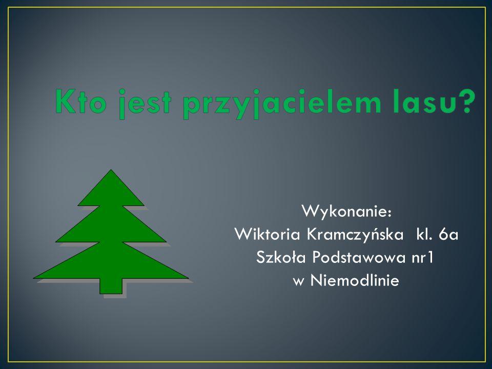 Wykonanie: Wiktoria Kramczyńska kl. 6a Szkoła Podstawowa nr1 w Niemodlinie