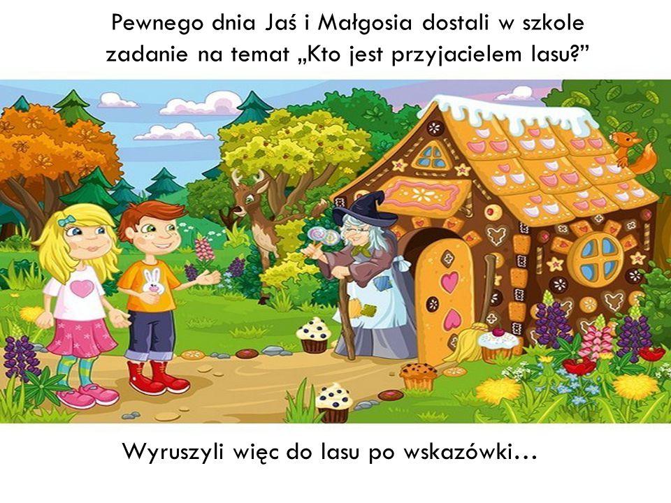 """Pewnego dnia Jaś i Małgosia dostali w szkole zadanie na temat """"Kto jest przyjacielem lasu?"""" Wyruszyli więc do lasu po wskazówki…"""