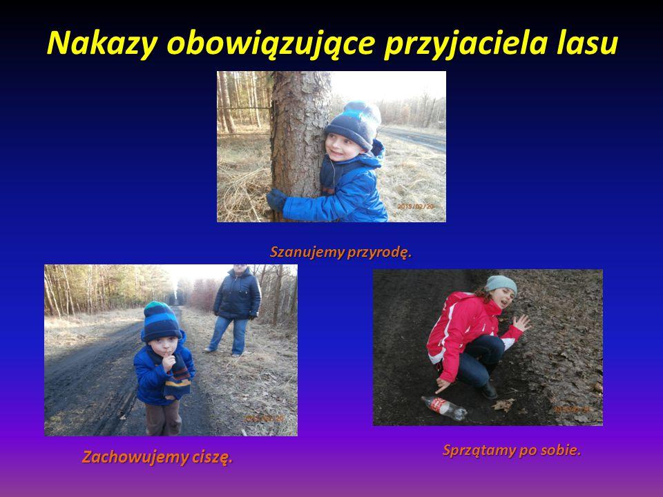 Nakazy obowiązujące przyjaciela lasu Zachowujemy ciszę. Szanujemy przyrodę. Sprzątamy po sobie.