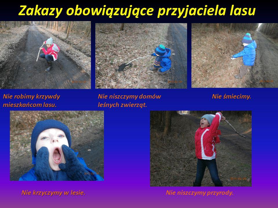 Zakazy obowiązujące przyjaciela lasu Nie krzyczymy w lesie.