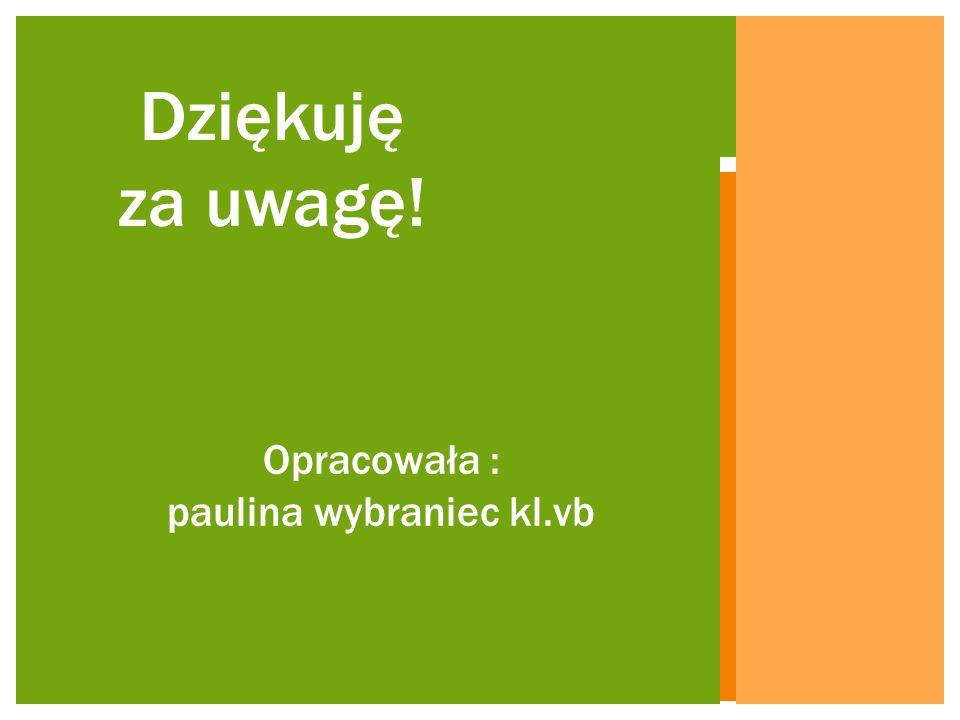 Opracowała : paulina wybraniec kl.vb Dziękuję za uwagę!