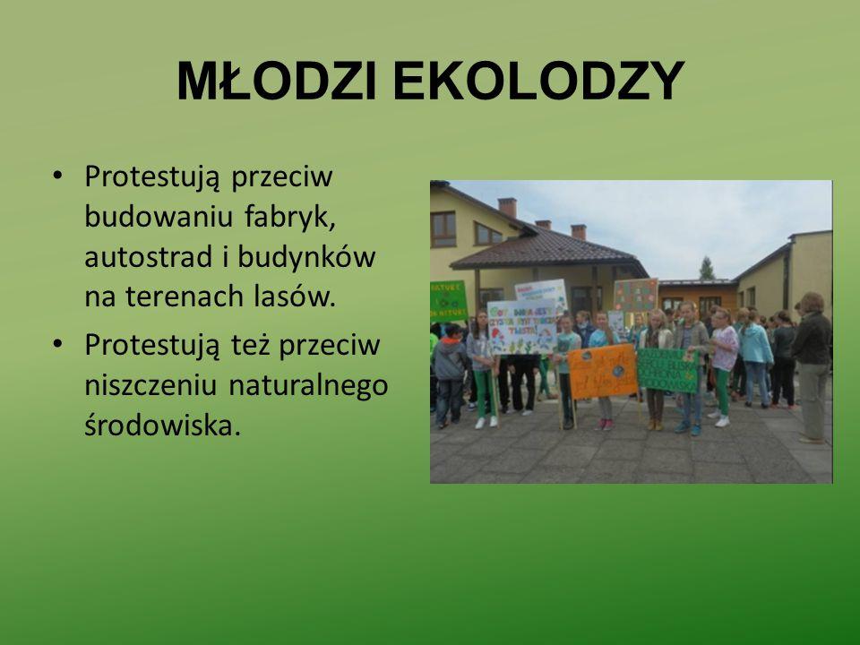 MŁODZI EKOLODZY Protestują przeciw budowaniu fabryk, autostrad i budynków na terenach lasów.