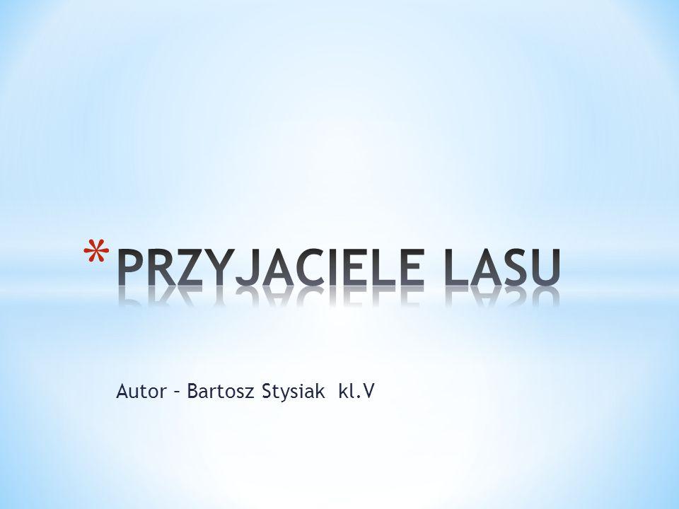Autor – Bartosz Stysiak kl.V