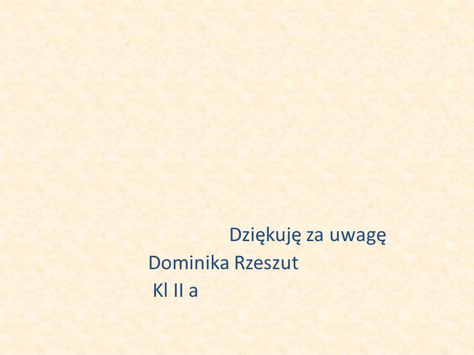 Dziękuję za uwagę Dominika Rzeszut Kl II a