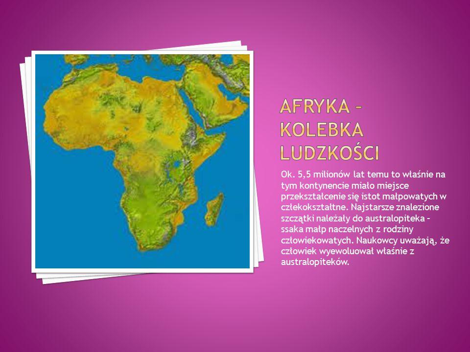 Ok. 5,5 milionów lat temu to właśnie na tym kontynencie miało miejsce przekształcenie się istot małpowatych w człekokształtne. Najstarsze znalezione s