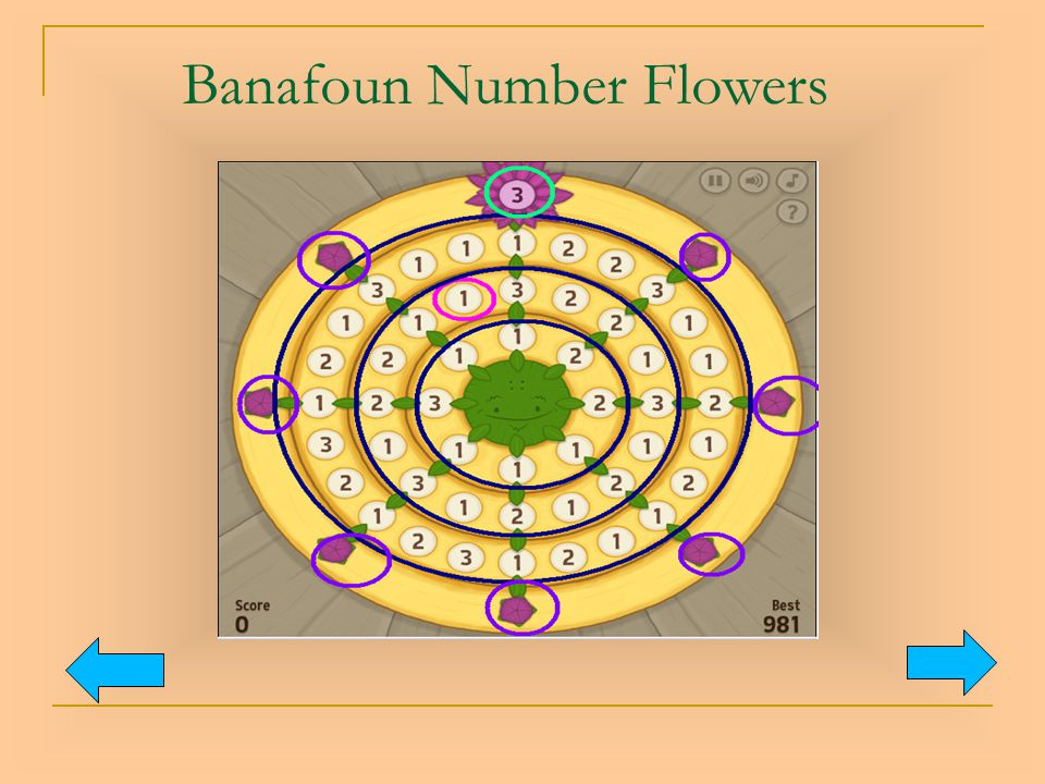 Banafoun Number Flowers