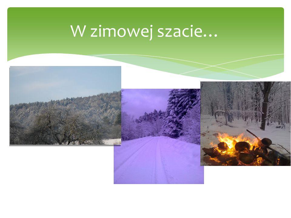 W zimowej szacie…