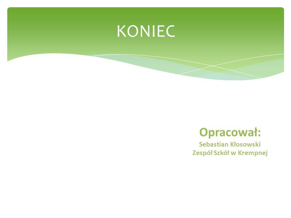 KONIEC Opracował: Sebastian Kłosowski Zespół Szkół w Krempnej