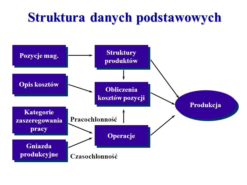 Pozycje mag. Opis kosztów Kategorie zaszeregowania pracy Kategorie zaszeregowania pracy Gniazda produkcyjne Gniazda produkcyjne Struktury produktów St