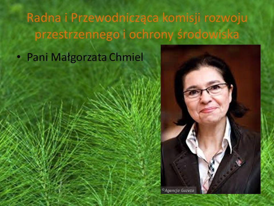 Radna i Przewodnicząca komisji rozwoju przestrzennego i ochrony środowiska Pani Małgorzata Chmiel