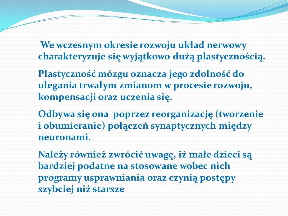We wczesnym okresie rozwoju układ nerwowy charakteryzuje się wyjątkowo dużą plastycznością. Plastyczność mózgu oznacza jego zdolność do ulegania trwał