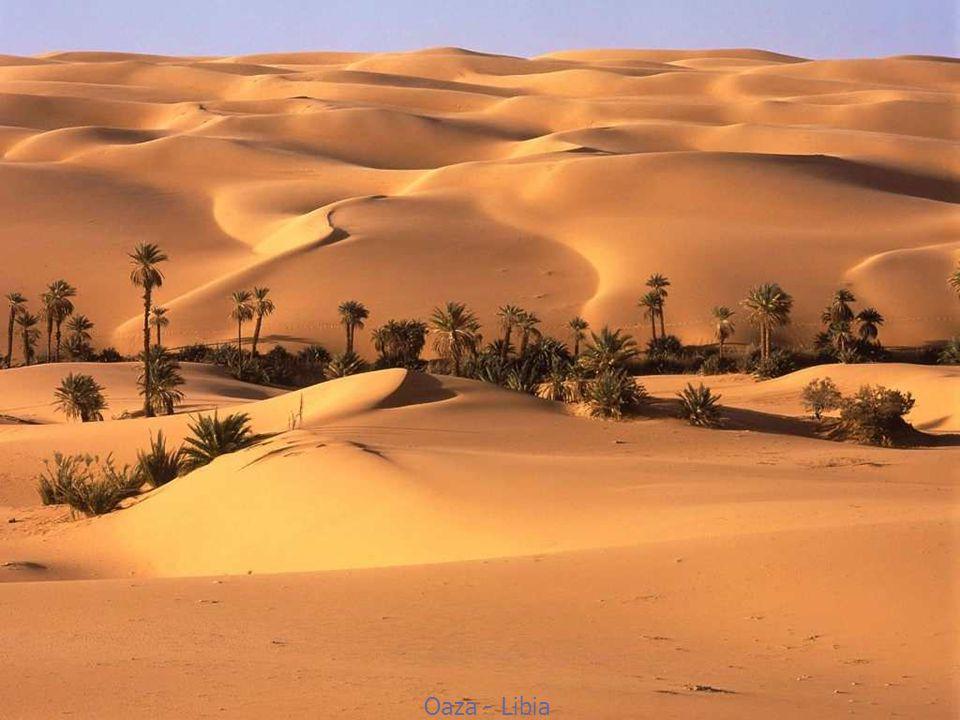 Oaza - Libia