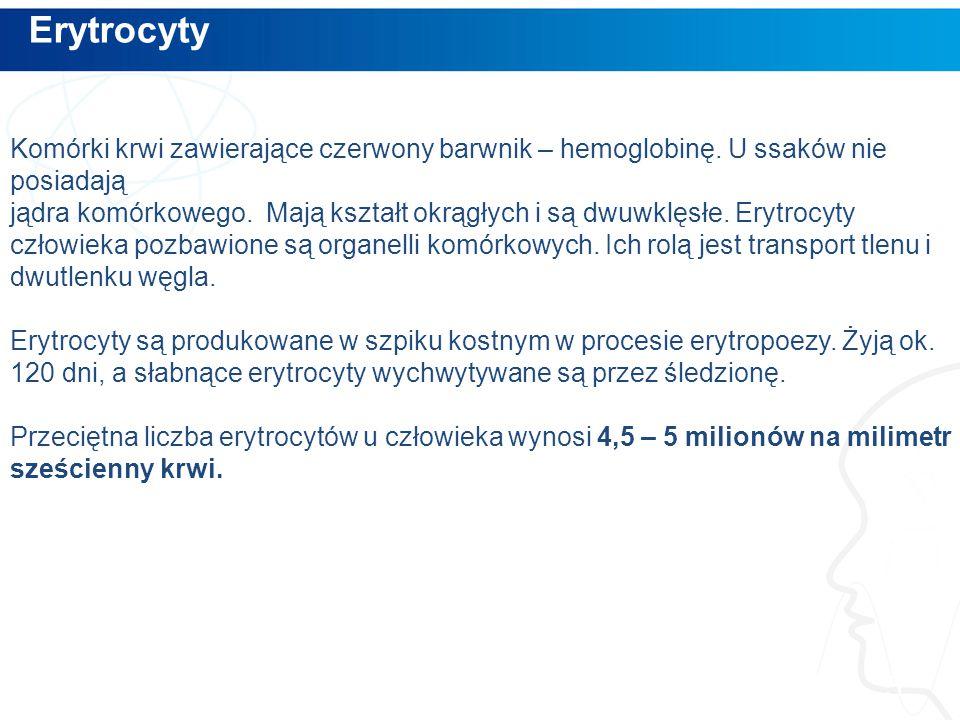 Erytrocyty 5 Komórki krwi zawierające czerwony barwnik – hemoglobinę.