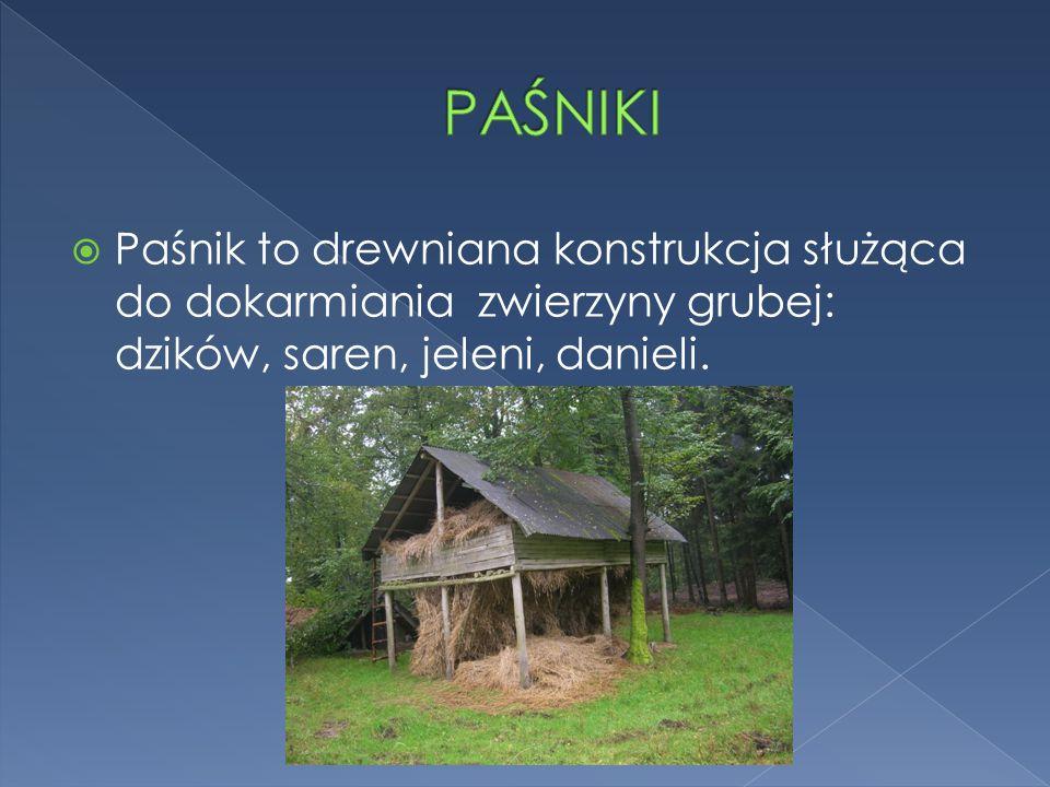  Paśnik to drewniana konstrukcja służąca do dokarmiania zwierzyny grubej: dzików, saren, jeleni, danieli.