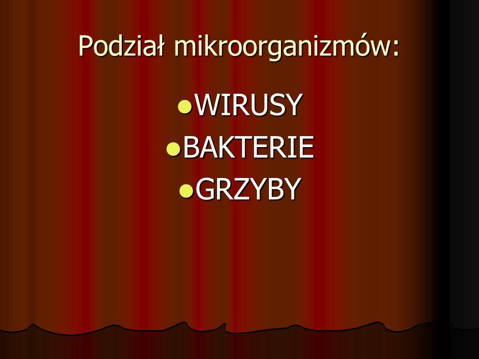 Podział mikroorganizmów: WIRUSY WIRUSY BAKTERIE BAKTERIE GRZYBY GRZYBY
