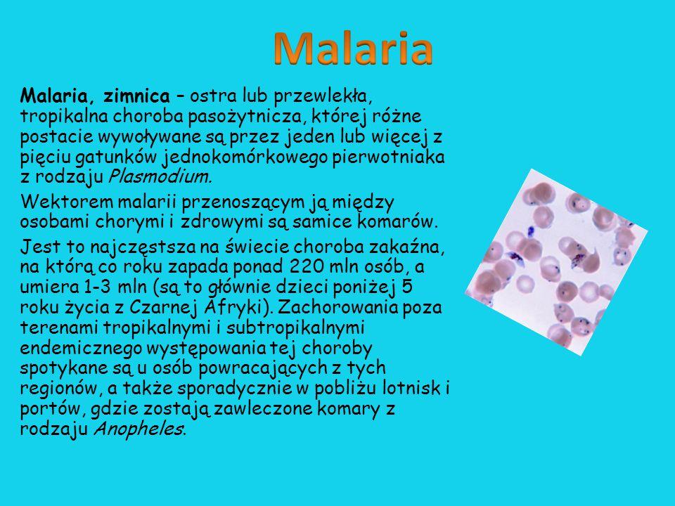 Malaria występuje w ponad stu krajach strefy tropikalnej i subtropikalnej; narażonych na zachorowanie jest około 1 miliard ludzi.