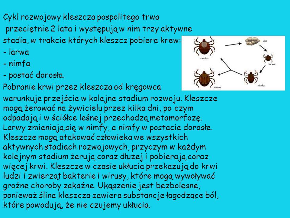 Bolerioza-wieloukładowa choroba zakaźna wywoływana przez bakterie należące do krętków: Borrelia burgdorferi, przenoszona na człowieka i niektóre inne zwierzęta przez kleszcze.