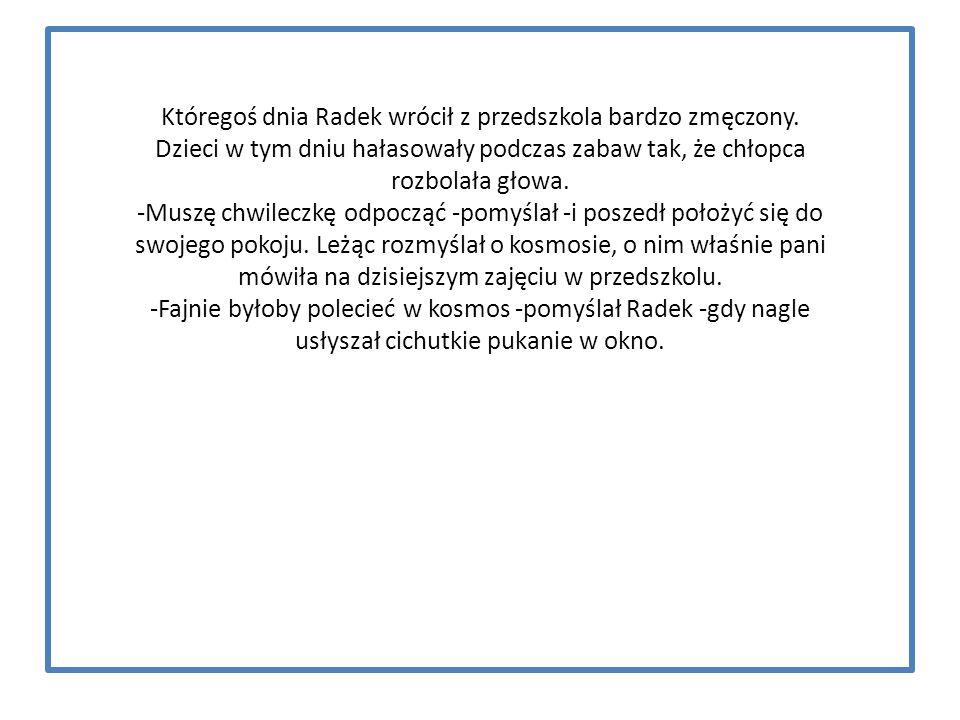 Bibliografia : 1.Opowiadanie,, Radek w kosmosie'' Iwona Rup 2.,, Klucz do uczenia się.