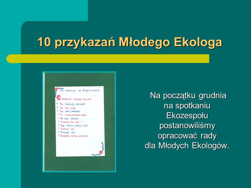 10 przykazań Młodego Ekologa Na początku grudnia na spotkaniu Ekozespołu postanowiliśmy opracować rady dla Młodych Ekologów.