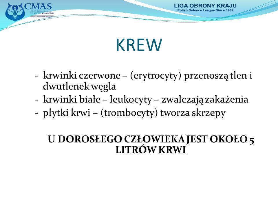 KREW - krwinki czerwone – (erytrocyty) przenoszą tlen i dwutlenek węgla - krwinki białe – leukocyty – zwalczają zakażenia - płytki krwi – (trombocyty)