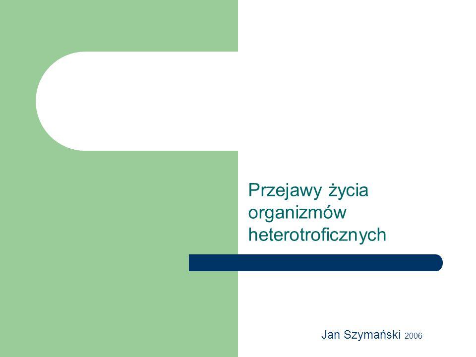 Przejawy życia organizmów heterotroficznych Jan Szymański 2006