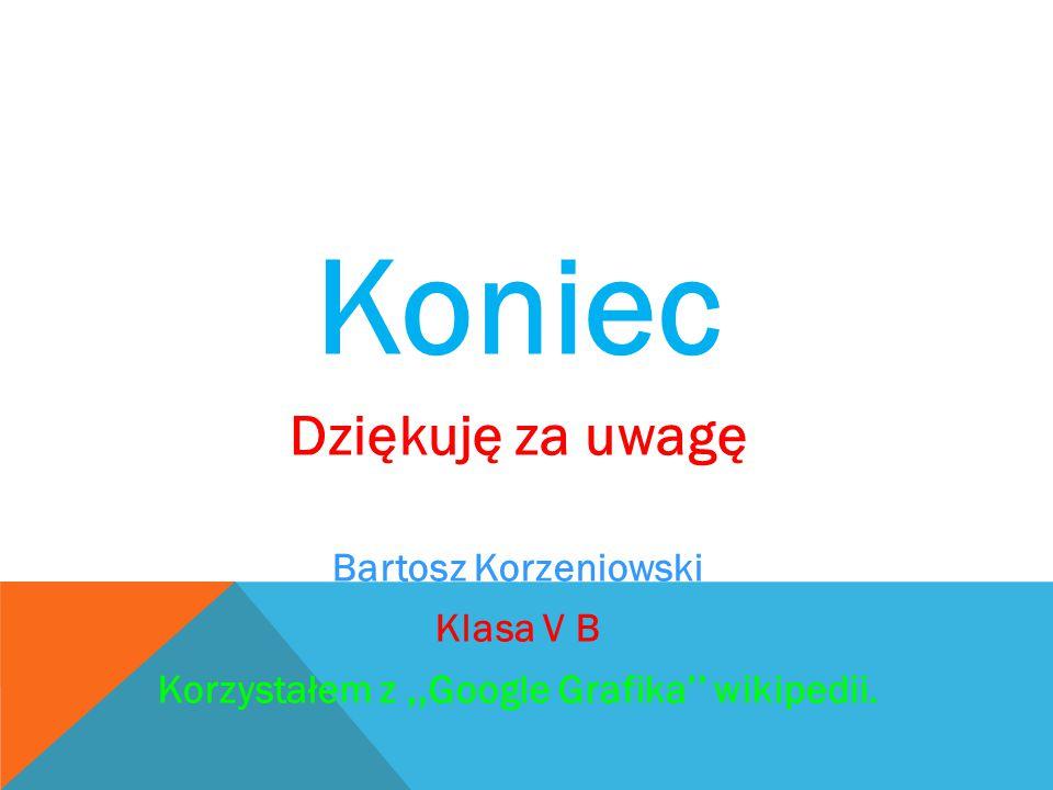 Koniec Dziękuję za uwagę Bartosz Korzeniowski Klasa V B Korzystałem z,,Google Grafika'' wikipedii.