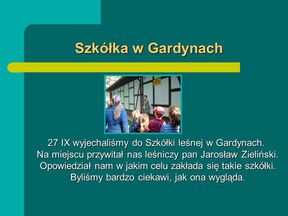 Szkółka w Gardynach 27 IX wyjechaliśmy do Szkółki leśnej w Gardynach.