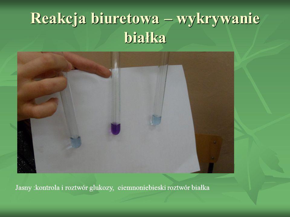 Próbki po ogrzaniu – próba Fehlinga wykrywająca glukozę Niebieska – kontrola, czerwona glukoza i sok z winogron