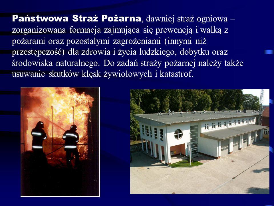 Państwowa Straż Pożarna, dawniej straż ogniowa – zorganizowana formacja zajmująca się prewencją i walką z pożarami oraz pozostałymi zagrożeniami (inny