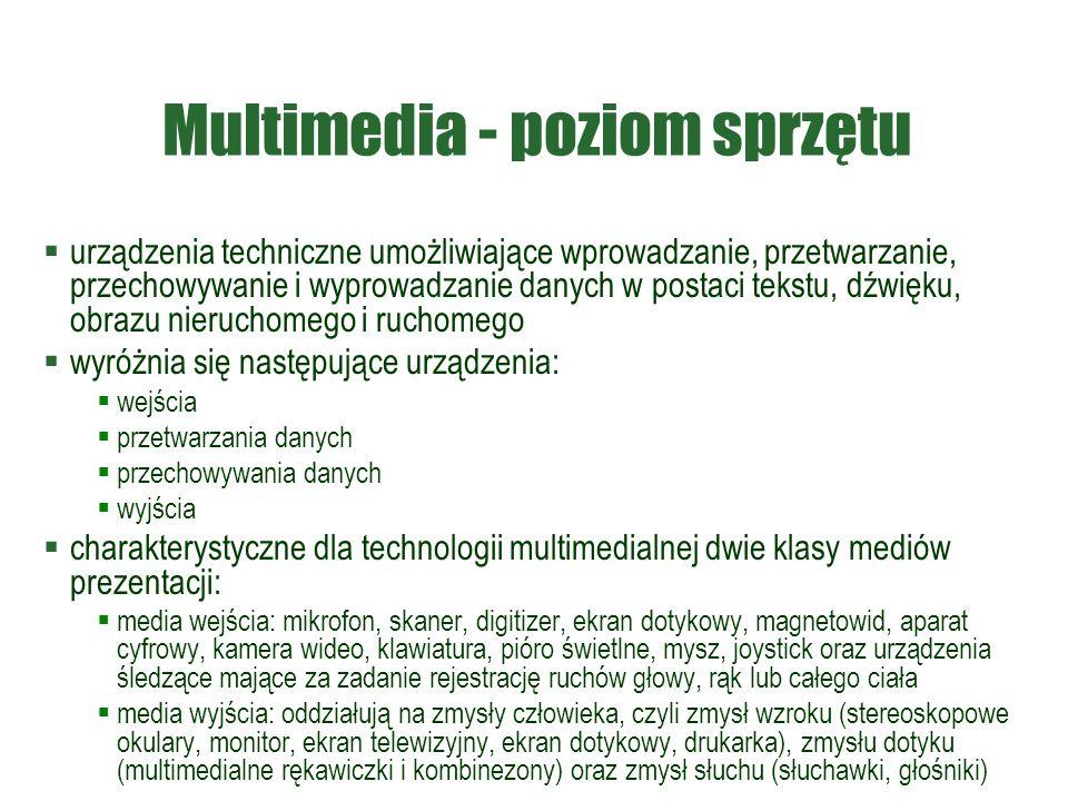 Multimedia - poziom sprzętu  urządzenia techniczne umożliwiające wprowadzanie, przetwarzanie, przechowywanie i wyprowadzanie danych w postaci tekstu,