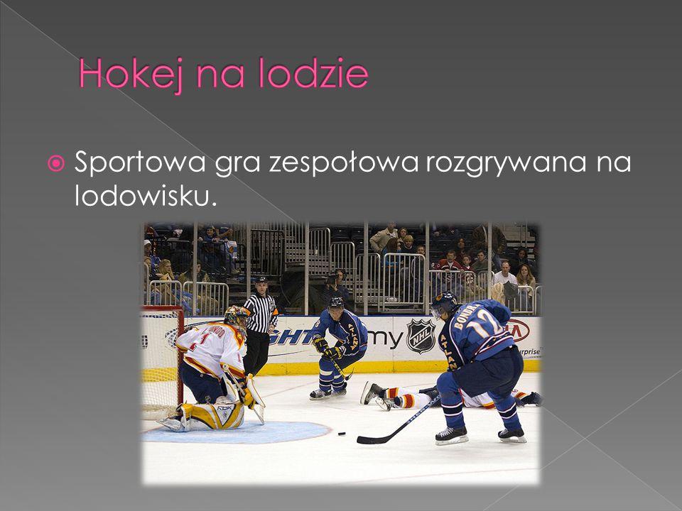  Sportowa gra zespołowa rozgrywana na lodowisku.