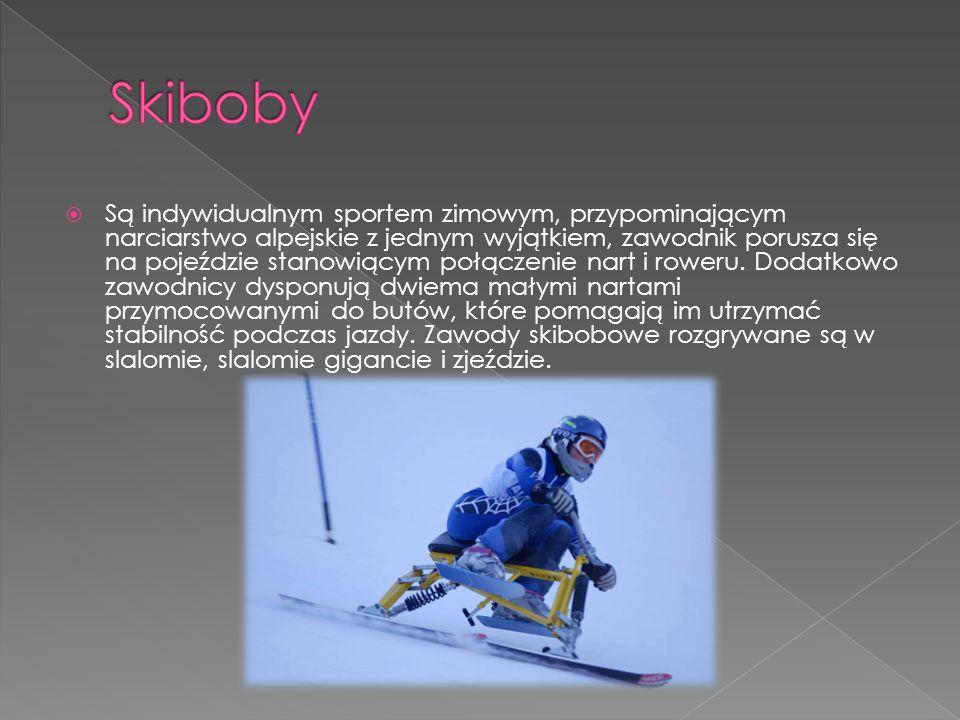  Są indywidualnym sportem zimowym, przypominającym narciarstwo alpejskie z jednym wyjątkiem, zawodnik porusza się na pojeździe stanowiącym połączenie