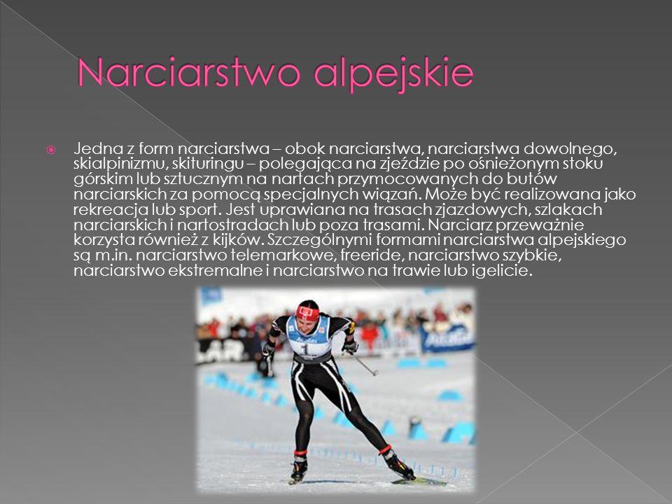  Jedna z form narciarstwa – obok narciarstwa, narciarstwa dowolnego, skialpinizmu, skituringu – polegająca na zjeździe po ośnieżonym stoku górskim lu
