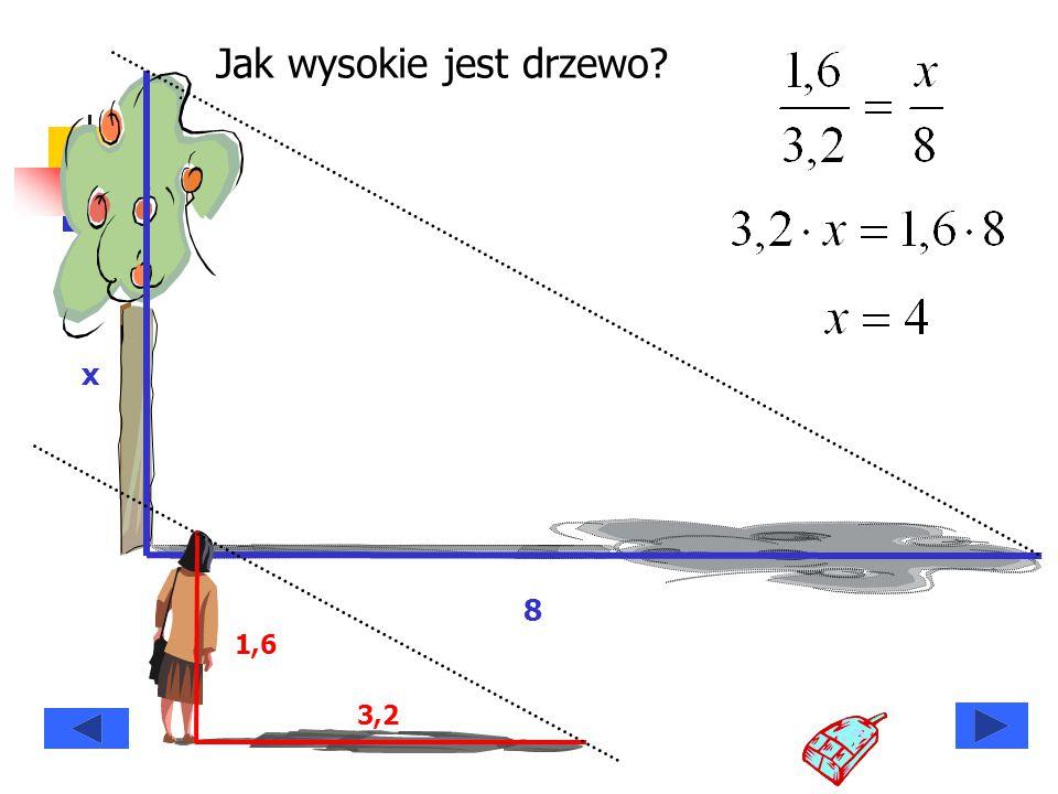 Jak wysokie jest drzewo? x 8 1,6 3,2