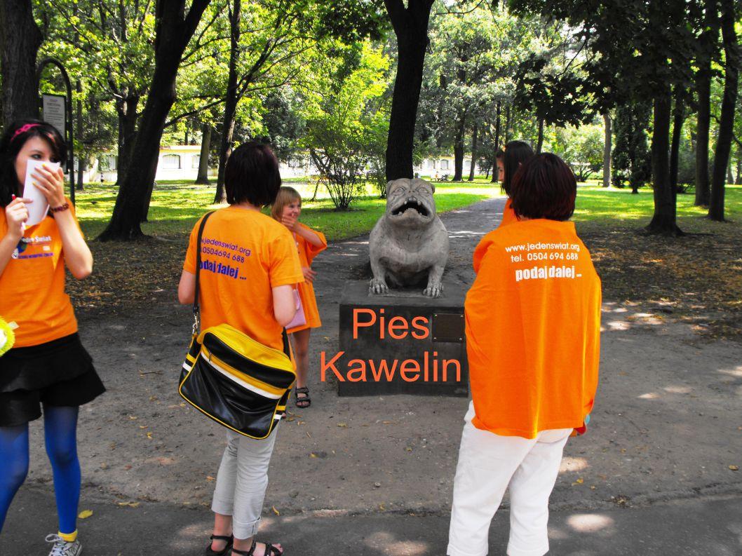 Pies Kawelin